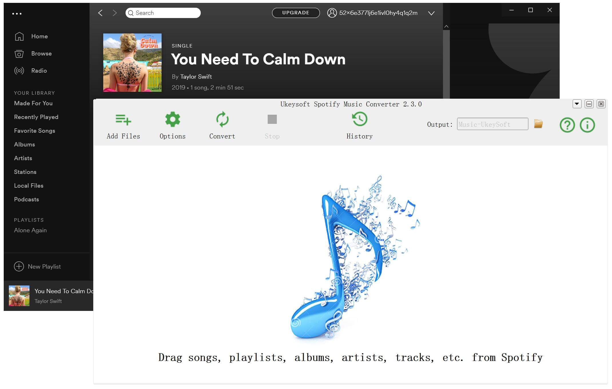 You Need To Calm Down Taylor Swift MP3 Download from Spotify
